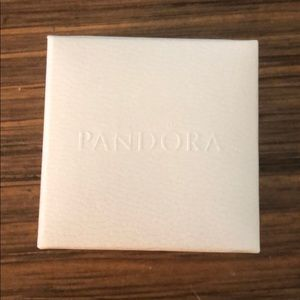 Pandora Cinderella charm